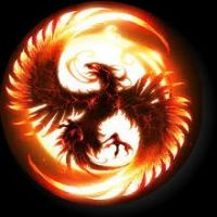 The Phoenix Circle